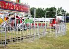 Forest Festival Arrives